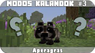 Modos Kalandok - Apéragrás - Az állati logikai pálya