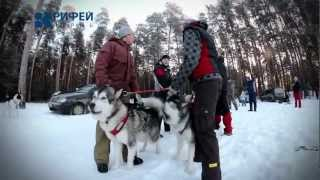 Мужской клуб   хаски(, 2012-12-20T20:13:48.000Z)