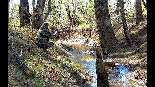 ОТКУДА В РУЧЬЕ СТОЛЬКО !!НАДО ЖЕ ТАК ПОПАСТЬ!! Рыбалка 2019 fishing in the puddles and streams