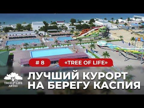 "Tree Of Life: ""Лучший курорт на Каспийском море"""