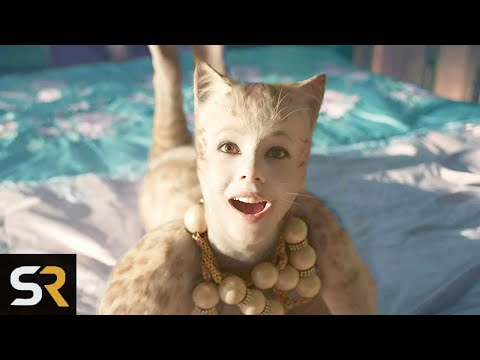 15 Things In Cats That Make No Sense At All