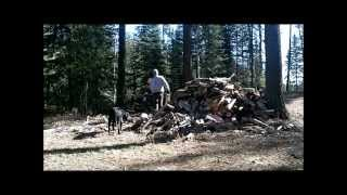 Moving the Wood Pile at the Tent. Ugh!