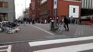 Storm Den Haag