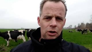 Boer Gerrit vlogt   Inkrimpen door fosfaatrechten