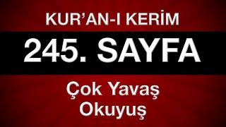 Kur an ı Kerim 246 sayfa