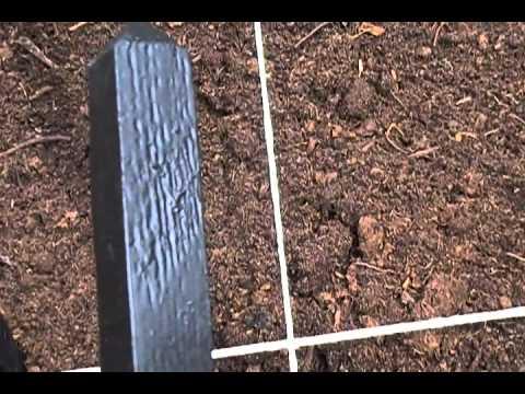Garden video 1 - April 10, 2011