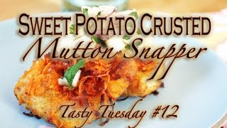 Sweet Potato Crusted Mutton Snapper: Tasty Tuesday #12