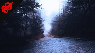 Chilling True Horror Stories To Relax With On A Cold Night