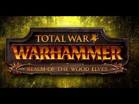 ЭЛЬФЫ И ЭЛЬФИЙКИ - WARHAMMER: Realm of The Wood Elves