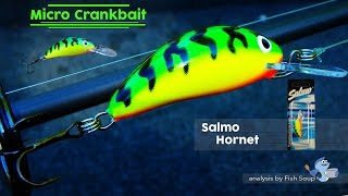 Salmo Hornet video