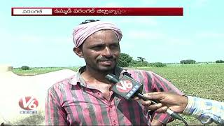 Drought Conditions Rise In Warangal Due To Low Rain Fall | V6 News