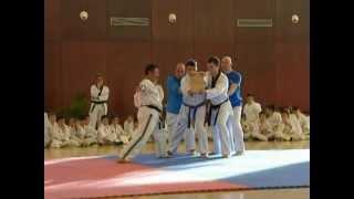 Rompimiento con un solo dedo por el Maestro PARK HYEON SEO cinturón negro 8 Dan Taekwondo