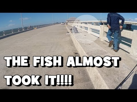 The FISH ALMOST TOOK HIS ROD!!! (FL Slam EP8) (Give-Away Included) (St. Petersburg, FL)