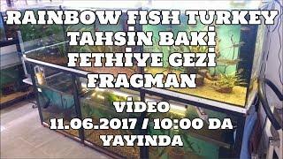 Hobihanem - Rainbow Fish Turkey (Tahsin Baki) [Fethiye] Gezi Fragman
