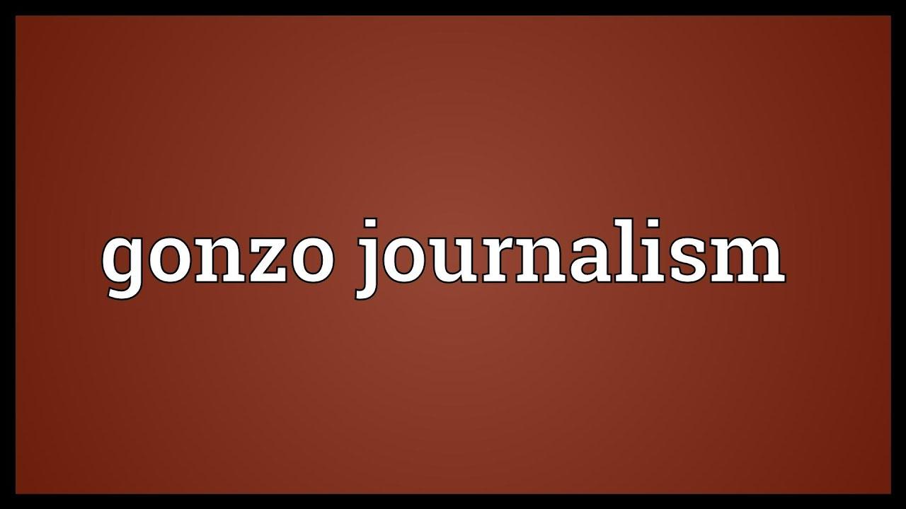 define gonzo