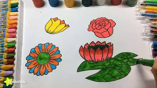 Colors for Children to Learn with Flowers, How to Draw Flowers, Colours for Kids to Learn
