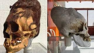 Паракасцы жили 3 000 років тому в Перу не були людьми, аналіз ДНК