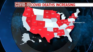 At least a dozen states report record hospitalizations due to COVID-19