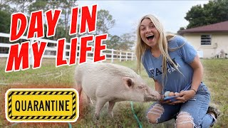 Quarantine Day In My Life with All My Pets! | Feeding All My Pets, Playing Star Stable, Cute Animals