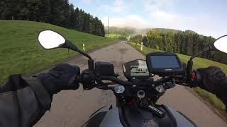 Aprilia Shiver 900 morning ride to the office, onboard, pure sound