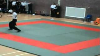 Fung Yang Sau Kung Fu Spiritual Dragon Spear - Shen Lung Chiang