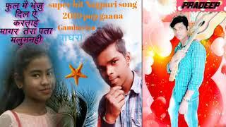 Phool main Bheju Dil Ye Kehta Hai magrTera Pata Maloom Nahin सुपार हीट गाना 2019