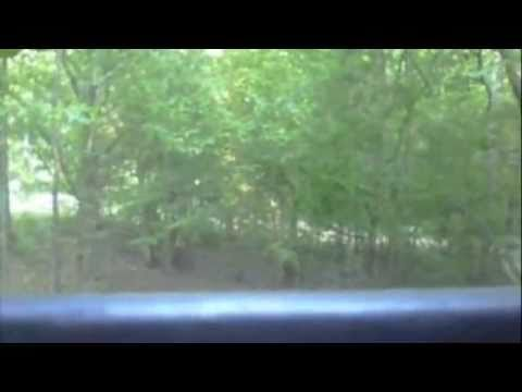 milf hunter clips