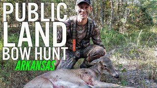 Public Land Bow Hunt in Arkansas 2017 S8 #44