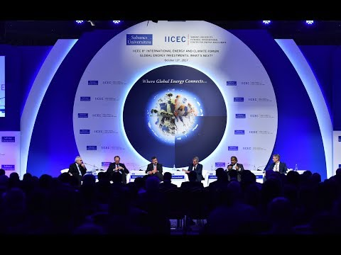 IICEC 8th International Energy and Climate Forum   Panel I Global Energy Policies