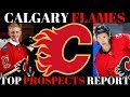 Top NHL Prospects 2018 - Calgary Flames (Feat: Auddie James)