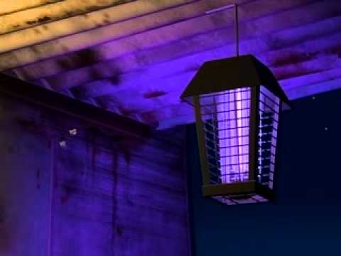 A Bug S Life 1998 Don T Look At The Light