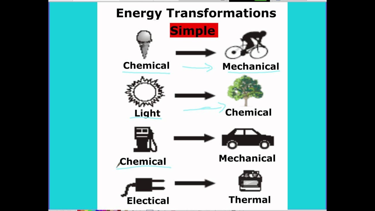 Forms Of Energy 6th Grade Science - science energy chain ...