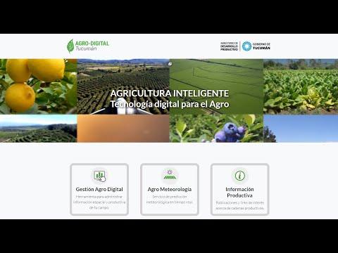 Proyecto MST NOA - Plataforma Agrodigital Tucumán