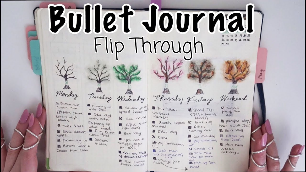 ♡ My 2019 Bullet Journal Flip Through *so far* | Amy Lee Fisher ♡