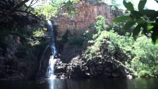 Видео обои - Водопад в джунглях(Скачать видео можно на странице: http://all4os.ru/personalization/video_wall/1116-video-oboi-vodopad-v-dzhunglyah.html., 2012-11-09T13:37:03.000Z)