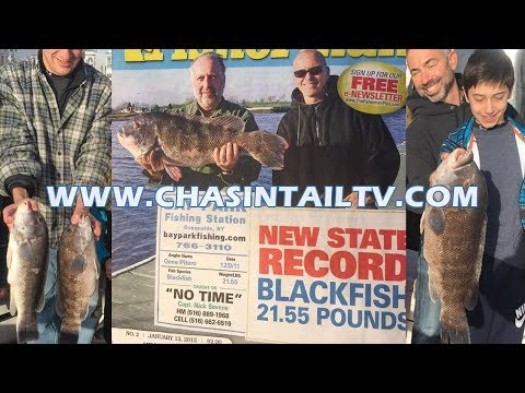 Tautog (Blackfish) Seminar W/ Capt. Nick Savene | Chasin' Tail TV
