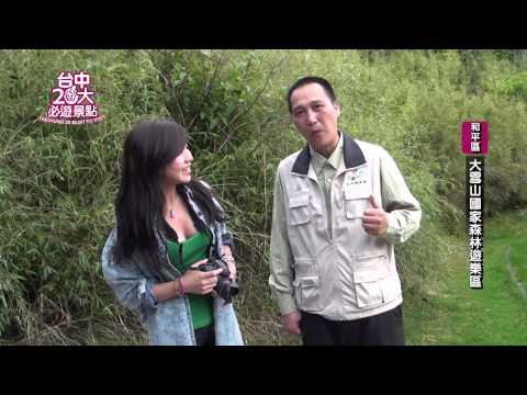 台中市20大必遊景點-《大雪山國家森林遊樂區》