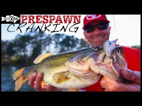 2 Crankbait Strategies for Prespawn Bass