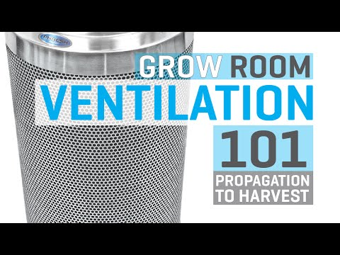 Grow Room Ventilation 101