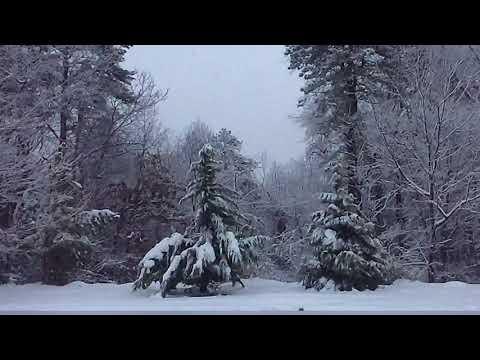 The Eddie Foxx Show - Three Desserts You Can Make Using Snow