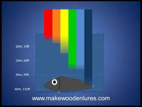 Fishing Lure Color Selection (Part 2): Depth Affects What Colors Fish Can See