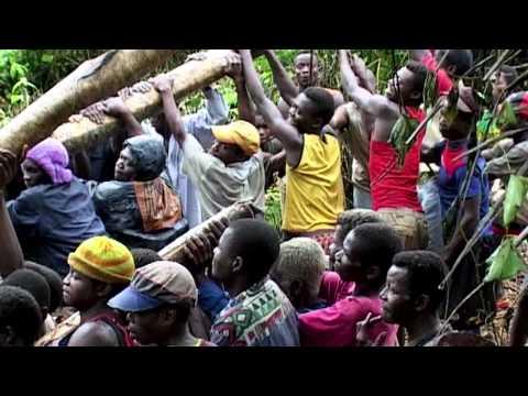 Sleeping Sickness in the Congo
