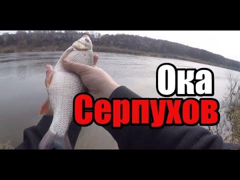 Фидер на Оке под Серпуховым в апреле.