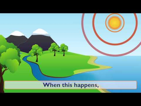Water: Water Cycle, Forms of Water and Water Conservation - Something Fishy: Kids Lesson 1