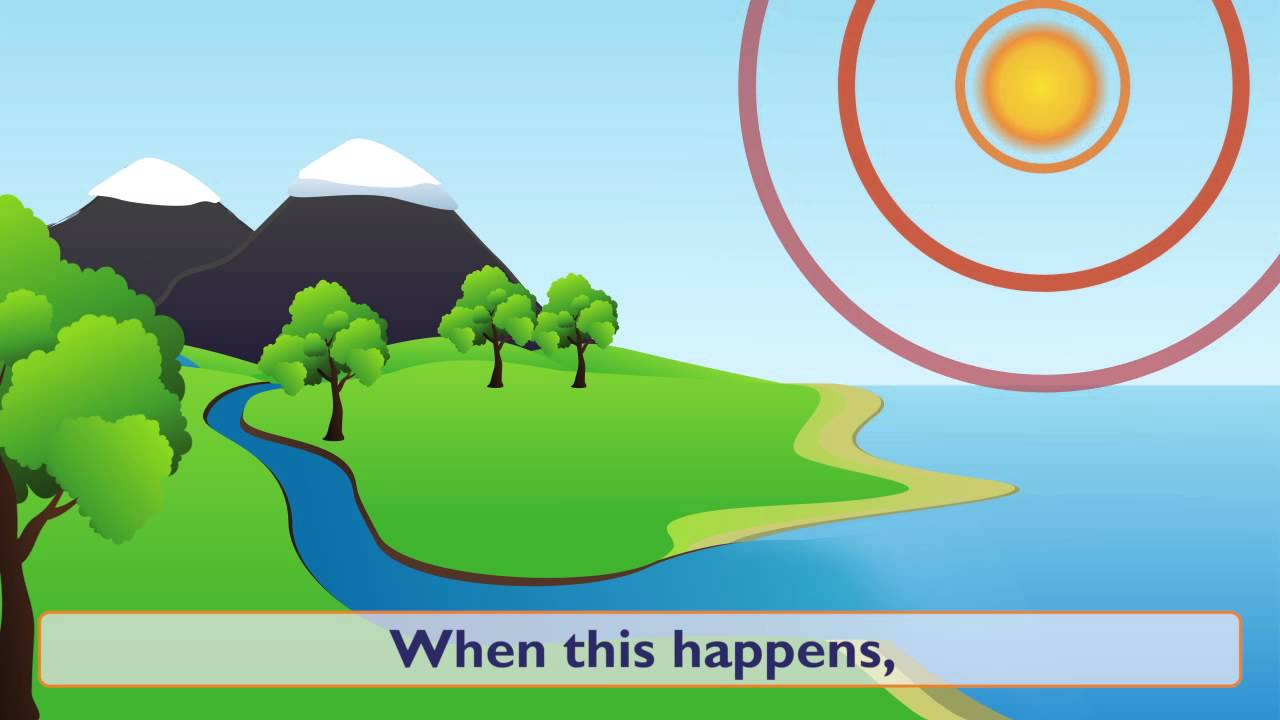 Water Cycle Forms Of And Conservation