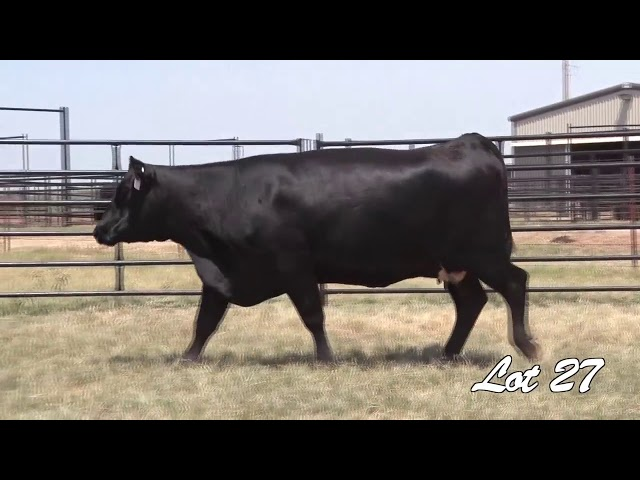 Pollard Farms Lot 27