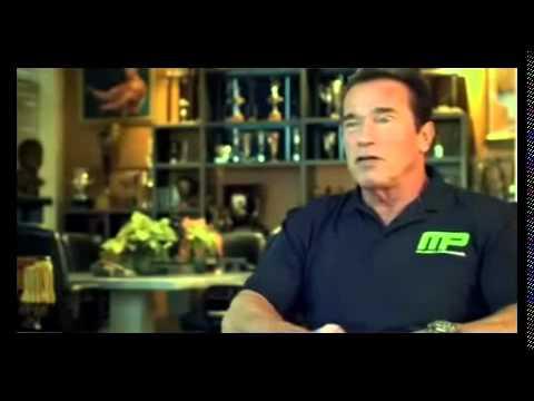 Bodybuilding com arnold schwarzenegger blueprint trainer mass bodybuilding com arnold schwarzenegger blueprint trainer mass training overview malvernweather Images