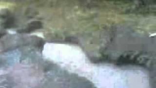 Ekspedisi sungai