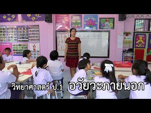 วิทยาศาสตร์ ป. 1 อวัยวะภายนอก ครูนาถฤดี สารสอน