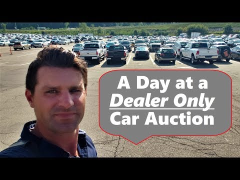 Dealer Only Auto Auction Access